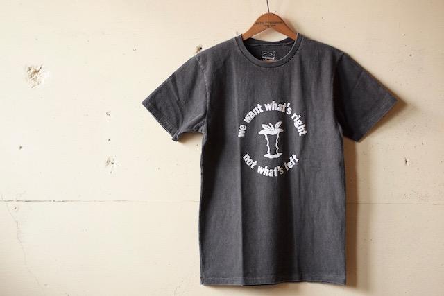 MIXTA(ミクスタ)Printed Tee APPLE Vintage Black-2